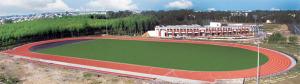 patiala track new