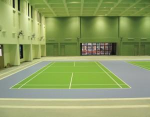 Indoor Badminton Court-BARC, Mumbai
